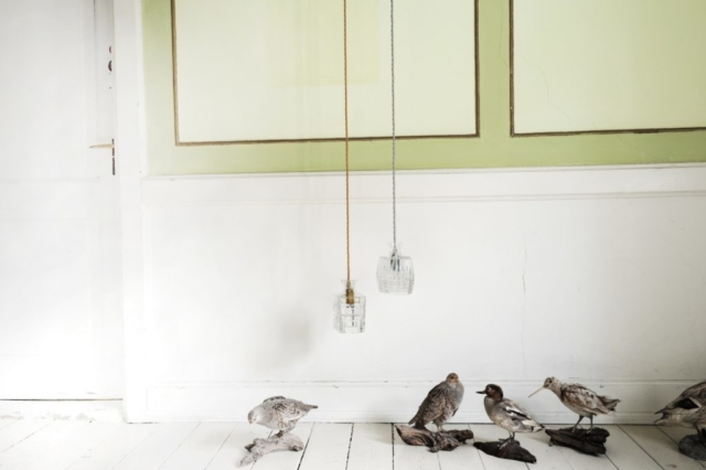 Crystal lamps by ebb & flow