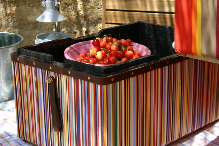 Die Thermobox Fresh*r in Stripes