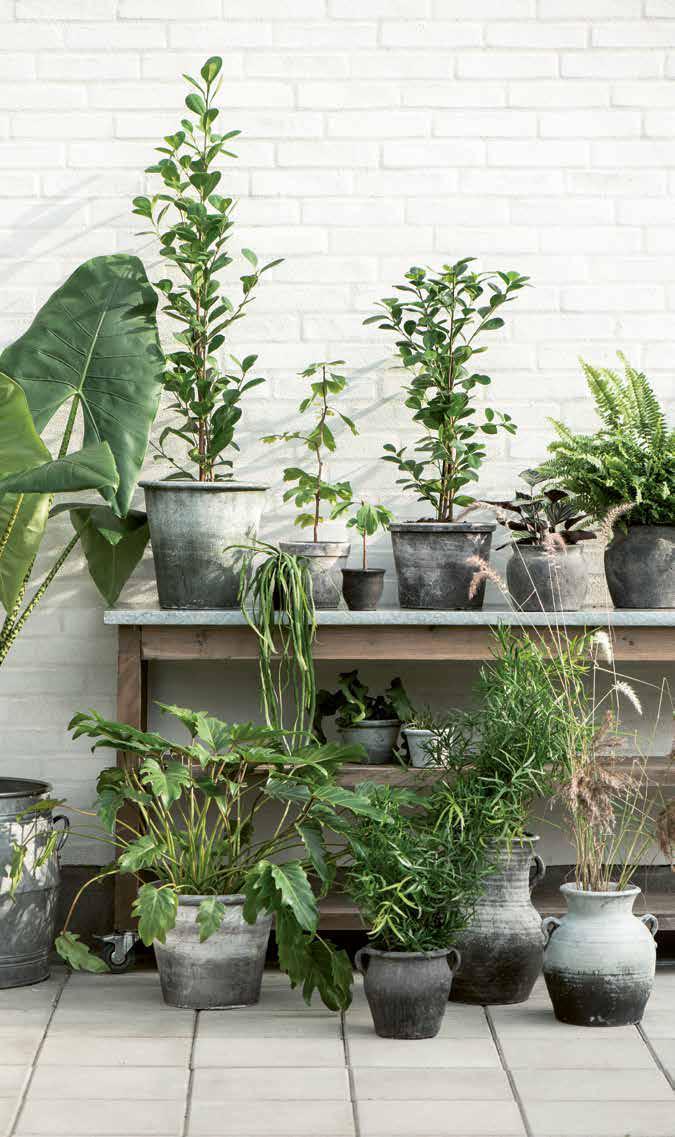 Gartenmöbel und Arbeitstische aus Skandinavien von Ib Laursen