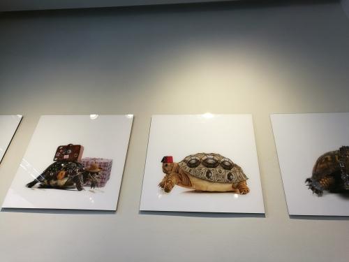 Wohnaccessoires, Dekoration, ChabiChic, Galerie